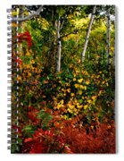 Colors On Mcclure Pass Spiral Notebook