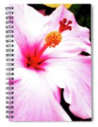 Colors Under The Sun Spiral Notebook