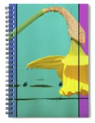 Colour Blocking Spring Spiral Notebook