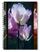 Coloured Tulips Spiral Notebook