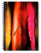 Colourful Feather Art Spiral Notebook