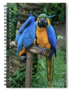 Colourful Macaw Pohakumoa Maui Hawaii Spiral Notebook
