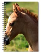 Colt Portrait Spiral Notebook