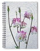 Columbine 3 Spiral Notebook