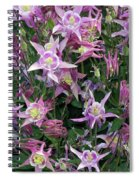 Columbine Splendor Spiral Notebook