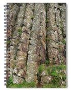 Columns Of Giants Spiral Notebook