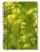 Colza Spiral Notebook