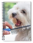 Combing Beards Of The White Dog Spiral Notebook