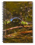 Come Along With Me Dragonflies Spiral Notebook