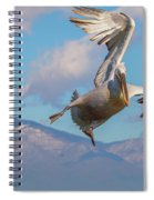 Come On - Are You Kidding Me Spiral Notebook