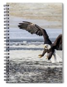 Coming In For The Catch Spiral Notebook