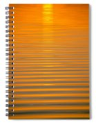 Coming Through In Waves Spiral Notebook