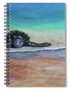 Coming To Nest Spiral Notebook