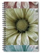 Coming Up Daisies 2 Spiral Notebook