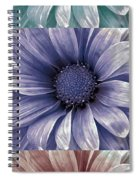 Coming Up Daisies Spiral Notebook