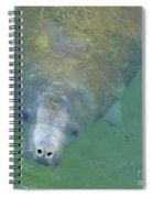 Coming Up For Air Spiral Notebook