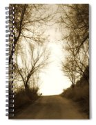 Coming Up The Drive 3 Spiral Notebook