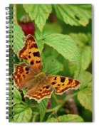 Comma Spiral Notebook