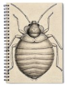 Common Bedbug, Cimex Lectularius Spiral Notebook
