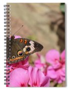 Common Buckeye Butterfly Spiral Notebook