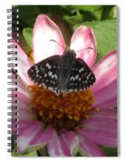 Common Checker Butterfly Spiral Notebook