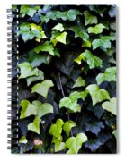 Common Ivy Spiral Notebook