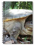 Common Snapping Turtle Spiral Notebook