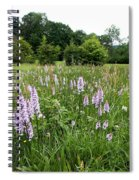 Common Spotted Orchids Spiral Notebook