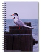 Common Tern Sterna Hirundo Spiral Notebook