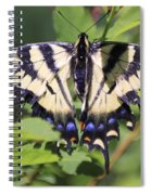 Common Yellow Swallowtail Spiral Notebook