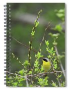 Common Yellowthroat Spiral Notebook