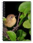 Common Yellowthroat Warbler Spiral Notebook