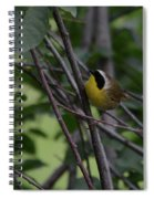 Common Yellowthroat Spiral Notebook