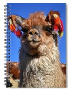Como Se Llama Spiral Notebook