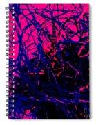 Complex Abstract Spiral Notebook