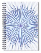 Concentrate Spiral Notebook