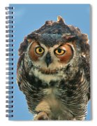 Concentration Spiral Notebook