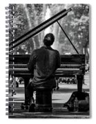 Concert In The Park Spiral Notebook