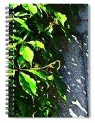 Concrete Green Spiral Notebook