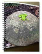 Concrete Toad Stool Spiral Notebook
