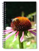 Cone Flower And Honey Bee Spiral Notebook