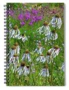 Cone Flower Fairy Dance Spiral Notebook