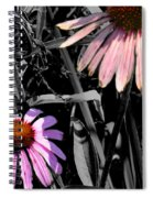 Cone Flower Tapestry Spiral Notebook