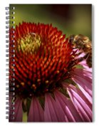 Coneflower Bee Spiral Notebook