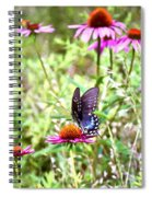 Coneflower Companion Spiral Notebook