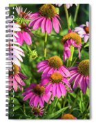 Coneflower Garden Spiral Notebook