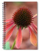 Coneflower Spiral Notebook