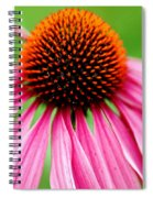 Coneflower Macro Spiral Notebook