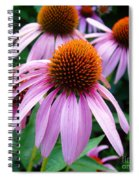 Three Coneflowers  Spiral Notebook
