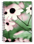 Coneflowers No. 8-2 Spiral Notebook